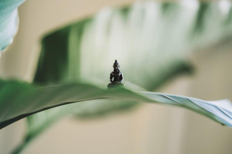 Soirées méditations et voyages intérieurs