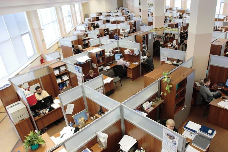 Credit Union Employees