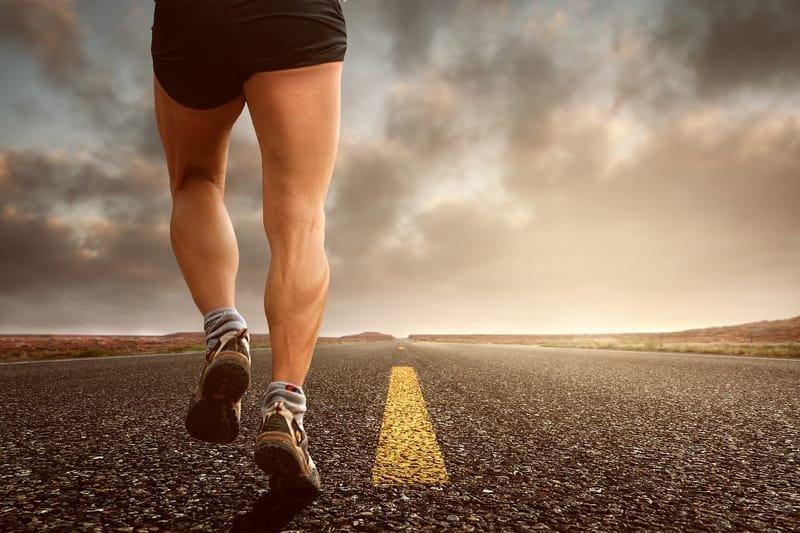 Exercise & Training Advice