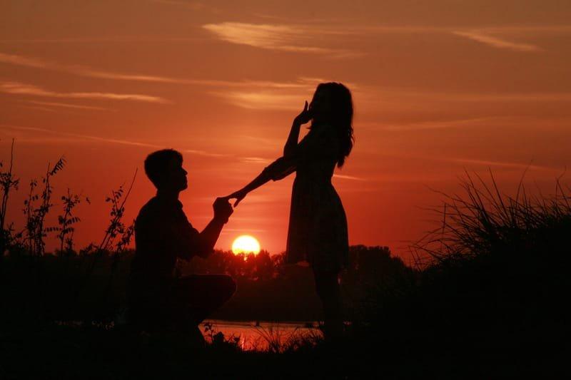DEMANDE EN MARIAGE  / SAVE THE DATE - 399€