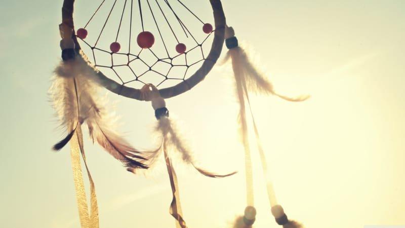 How did the Dominion Indian Schools originate?