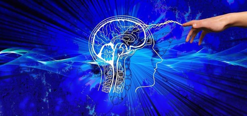 Dyslexia Diagnosis/ cognitive assessment