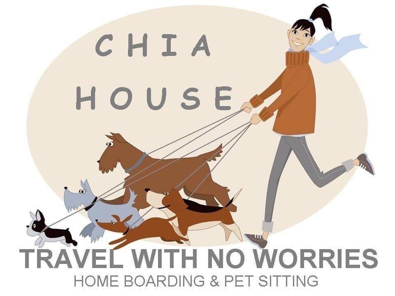 CHIA PET SITTING