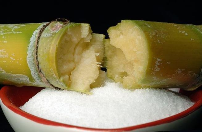 Zoara sugar industry