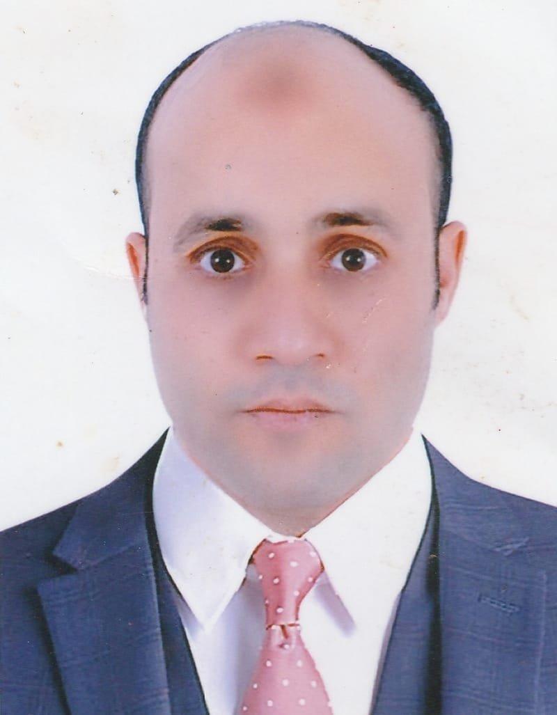 Diaa Abdelzaher