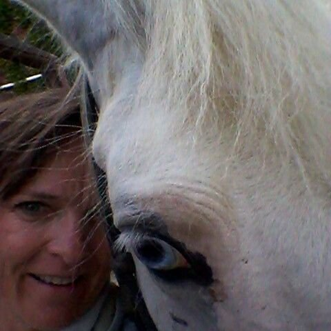Les soins par les chevaux