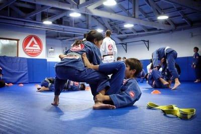 What is Brazilian Jiu-Jitsu