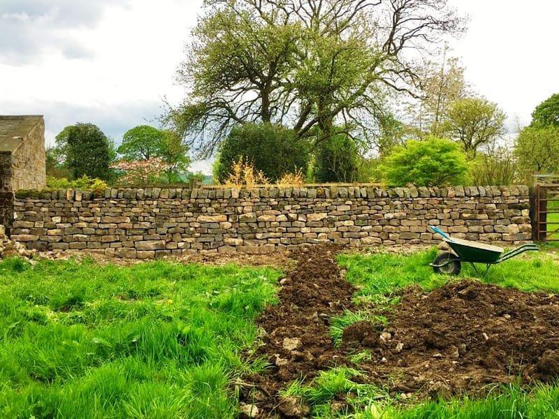 Watercourse and garden/field wall boundary