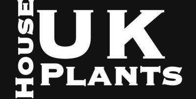 ukhouseplants