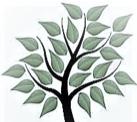 Gep Tree Holding ltd