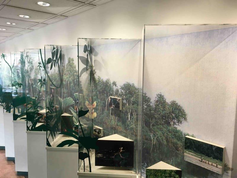 Custom Acrylic Displays Fabrication / Design