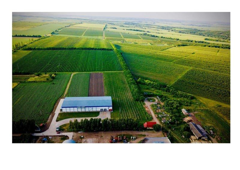Apple farm for sale in the Carpathian region