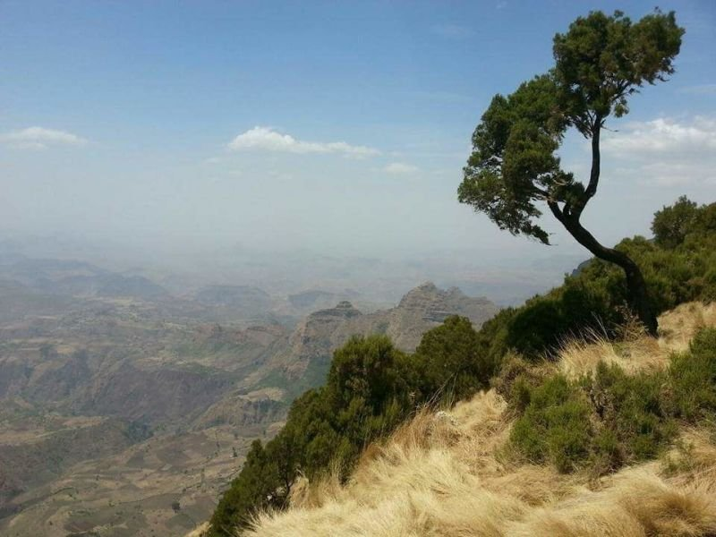 Simien Mountain National Park