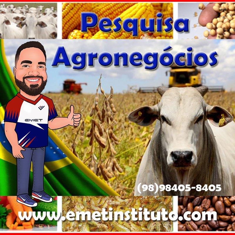 Pesquisa Rural - Agronegócios
