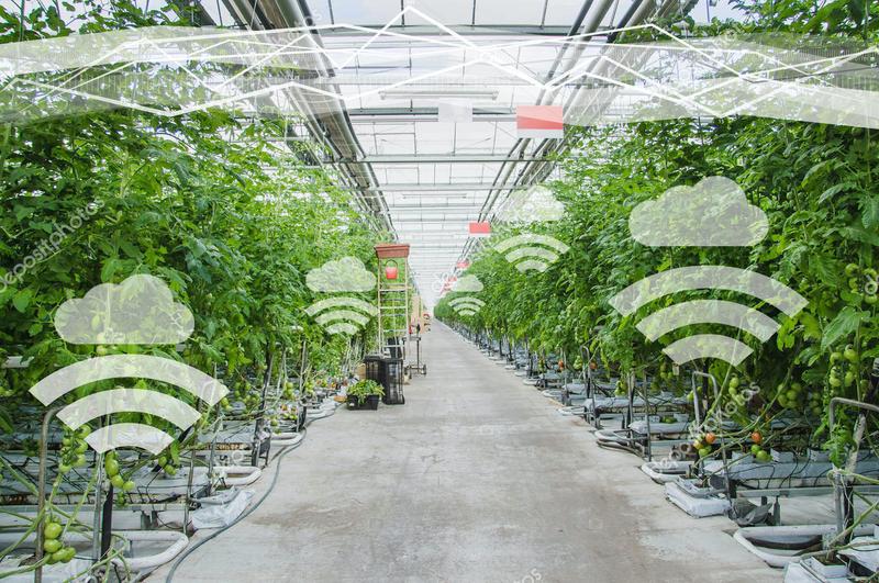 Precision Agriculture & Digital Farming
