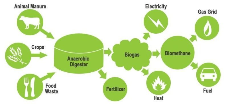 Biogas and Waste Management