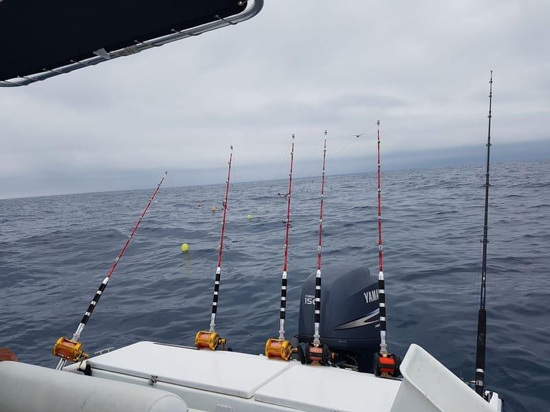"""Technique de pêche au thon rouge au """"Broumé"""""""
