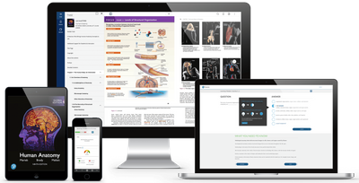 Online Anatomy pre-med course