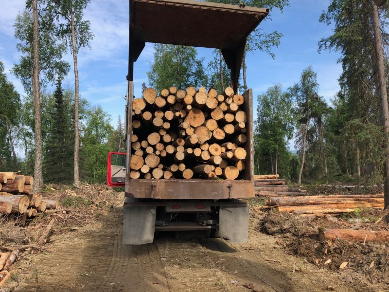 Firewood and Sawlog Sales