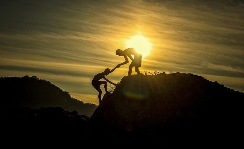 Organizational development and support