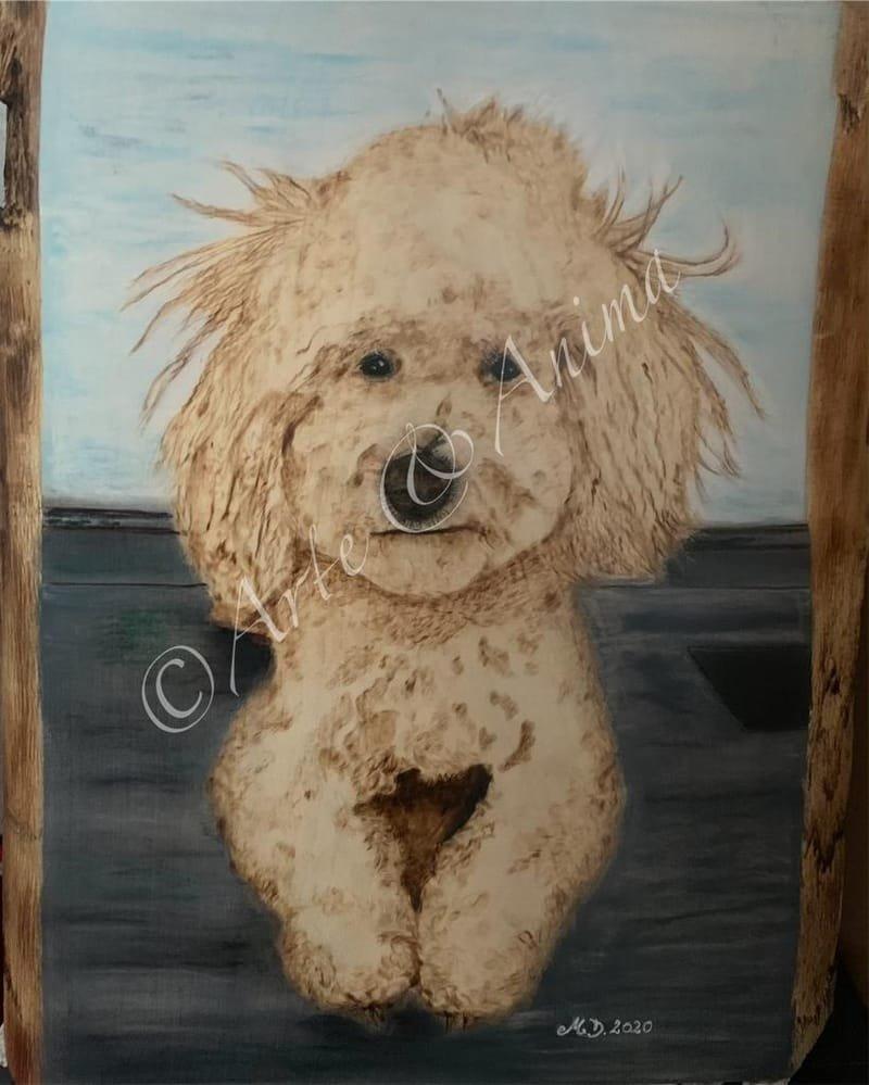 Ritratto barboncino su legno grezzo A3 con pirografo e pastelli Rembrant