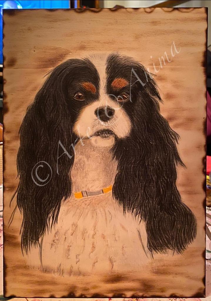 """Ritratto Geremy """" piccolo grande cane"""" con colori Caran D' Ache Luminance su compensato A4"""