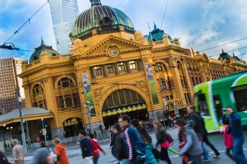 Tour Of Victoria - Day Hire From $50 P/H