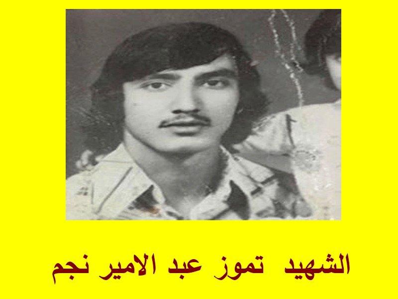الشهيد  تموز عبد الامير نجم