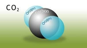 Data used for Carbon Dioxide emissions.
