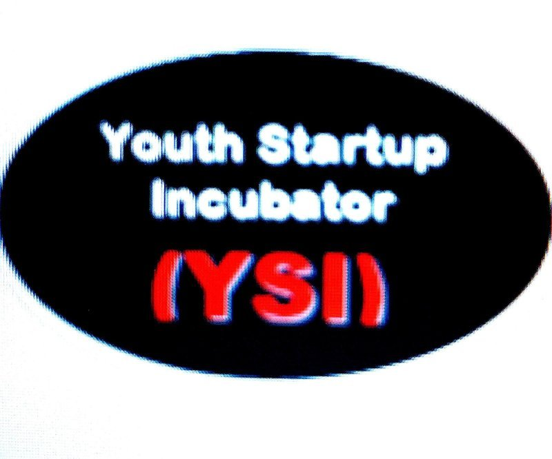 BUILDING YOUTH ENTREPRENEURIAL CAPACITY AS A WAY TO GET OUT OF UNEMPLOYMENT