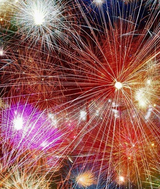 Animals & Fireworks