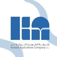 الكويت للزراعة للمحارم الورقية