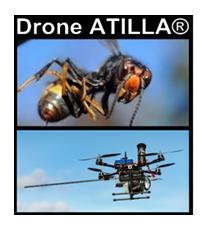 Drone ATILLA®