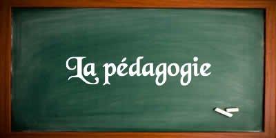 4- Les moyens pédagogiques, techniques et d'encadrement