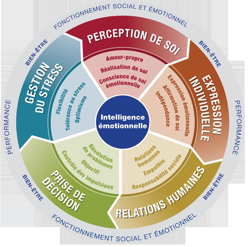 Test de QE : Diagnostic de votre Intelligence Emotionnelle