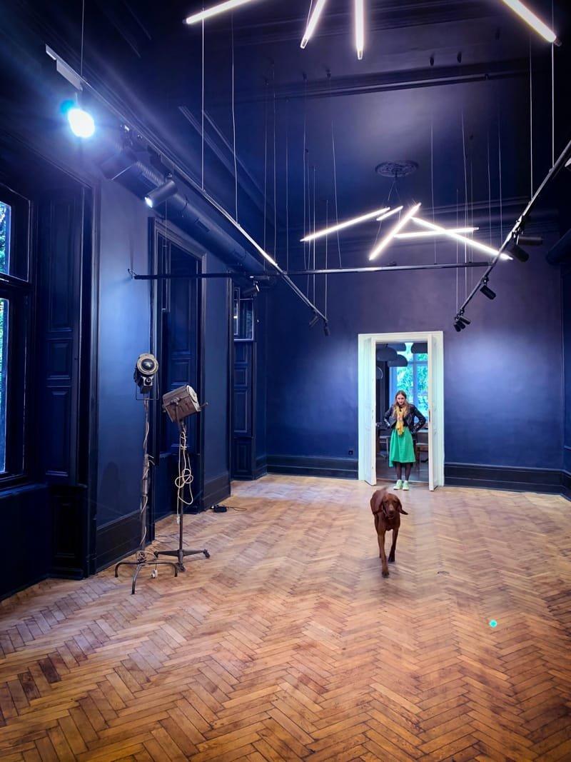 Galéria, kiállítótér