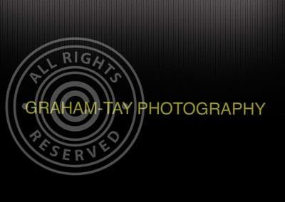 Allan Graham-Tay