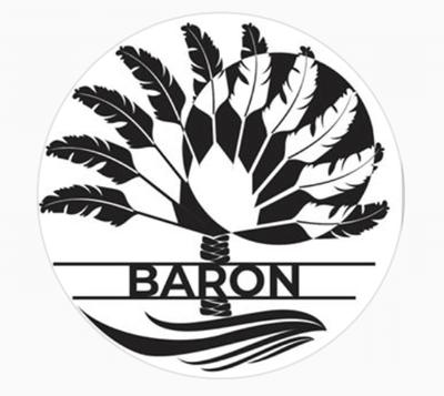 Baron Luxury Escapes