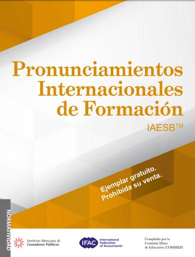 Normas Internacionales de Formación