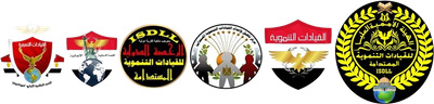 الهيئة الأممية العليا للقيادات التنموية المستدامة