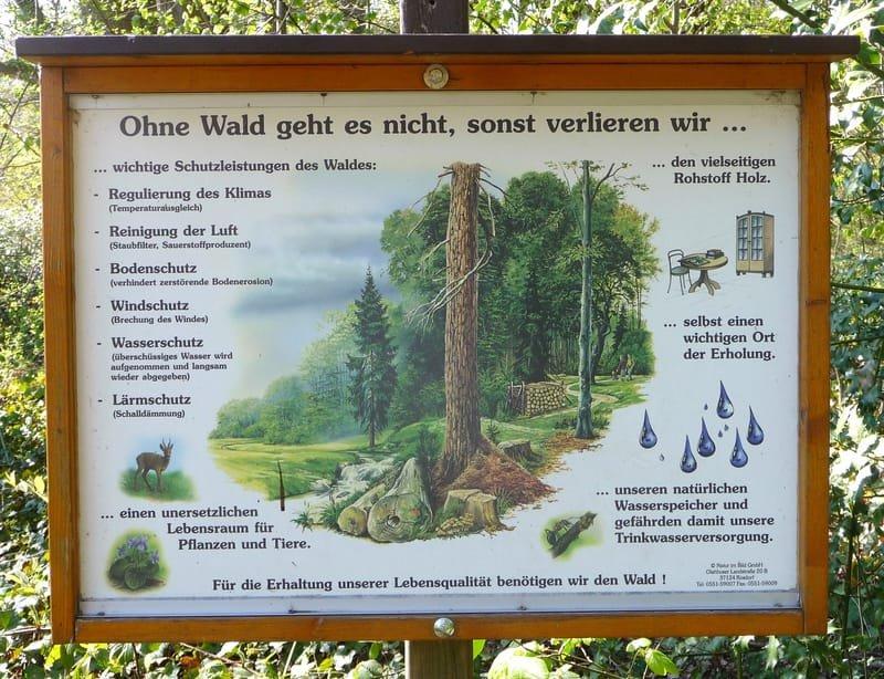 Der Waldlehrpfad
