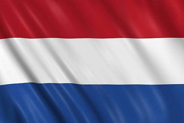 CV Nederlands