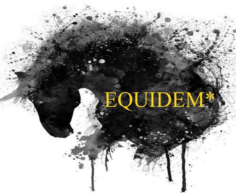 EQUIDEM* - Coaching insieme al cavallo