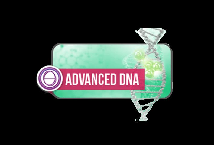 DNA Avançado Presencial e Online