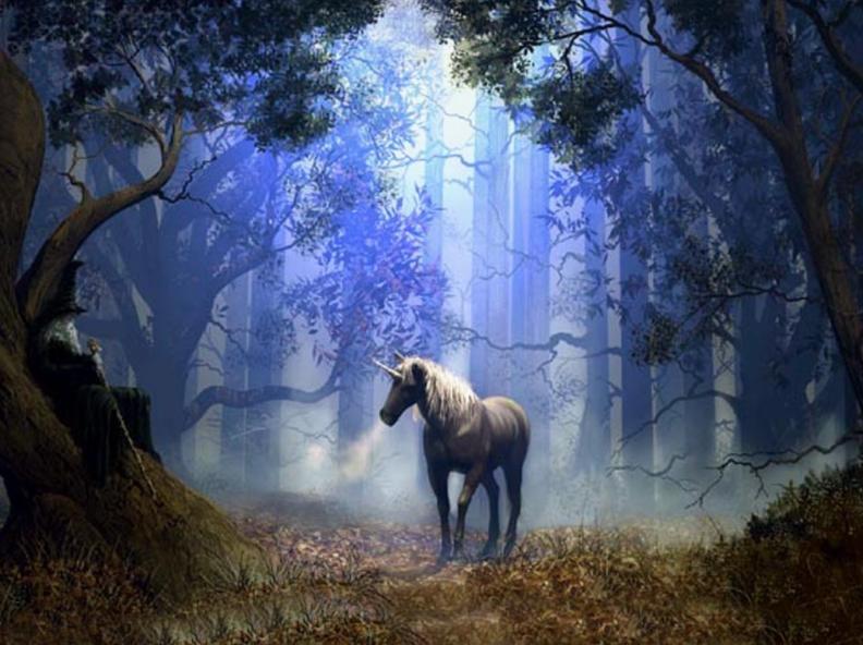 Soul Readings through the unicorns.  £10 Sunday 25th July 5pm - 730pm.