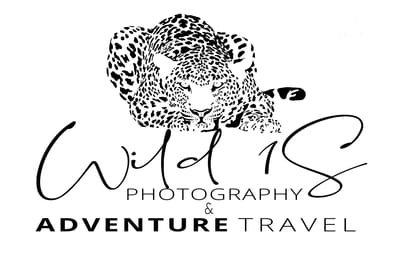 Wild 1S Photography & Adventure Travel
