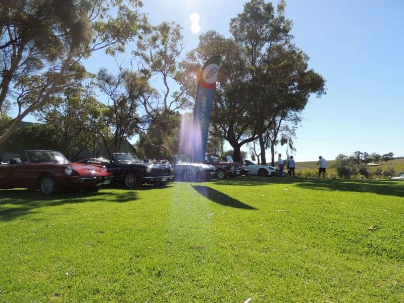 Italian Made Cars - McLaren Vale Classic and Vintage Festival