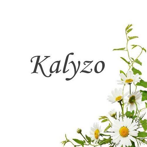 Kalyzo