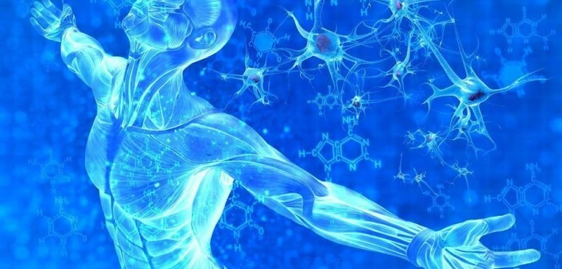 Stem Cell Therapy and MS