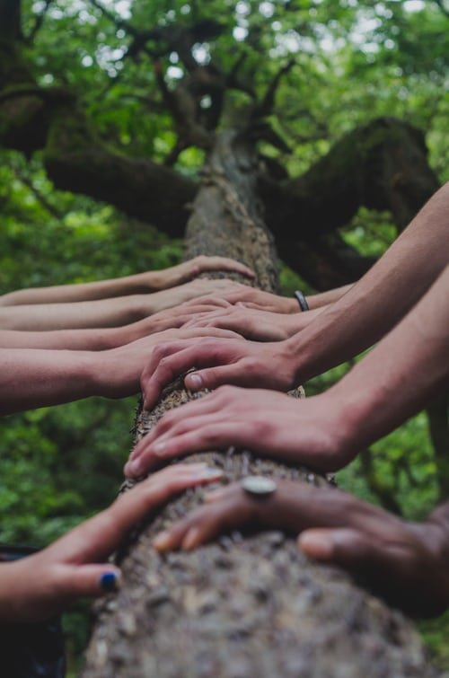 Reiki for Group Events